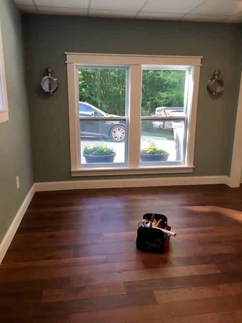 Cat Room Update